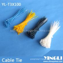 Attache de câble en nylon largement utilisée en 100 mm (YL-T3X100)