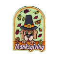 Thanksgiving Harvest Pumpkins Gourds Leaves Patch
