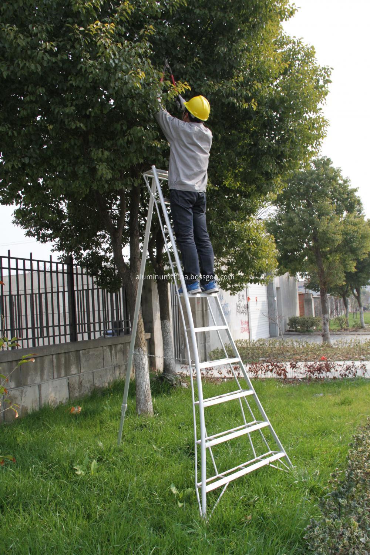 GMK Tripod ladder