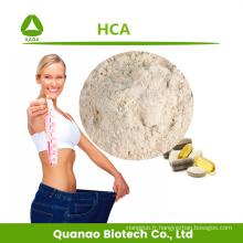 Poudre d'acide hydroxycitrique HCA d'extrait de Garcinia Cambogia