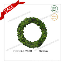 D25cm Any Occasion Flowers&Wreaths Decoration Wall Art Preserved Boxwood
