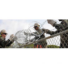 Galvanized Wire Mesh Fencing/PVC Coated