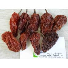 Smoke Dried Ghost Chili