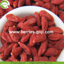Perdre du poids Fruits Nutrition naturelle Tibet Goji Berry