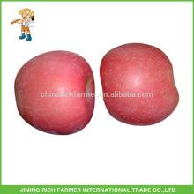 Grade A Yantai Fresh Fruit Red Fuji Apple Wholesale Price