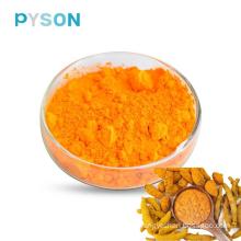 Extrait de curcuma 95% HPLC USP