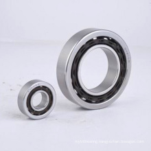 Stainless Steel Angular Contact Ball Bearing (SS7000C, SS7200C, SS7300C)