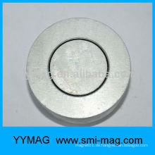 Lautsprecher-Magnet / Alnico
