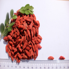Dinh dưỡng cao Healthy wolfberry