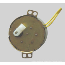 AC Synchronous Motor (49TDY-A)