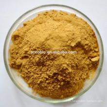 Producto de venta caliente Certificado de producto orgánico Cordyceps Militaris Extracto / Polvo