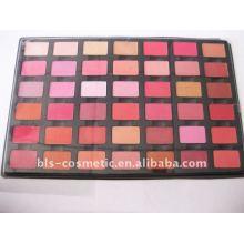 42 couleurs de palette de blush