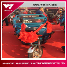 500W China Cargo Electric Tricycle for Adults