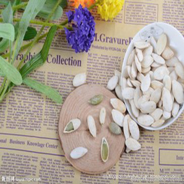 Latest hot selling pumpkin seeds of China