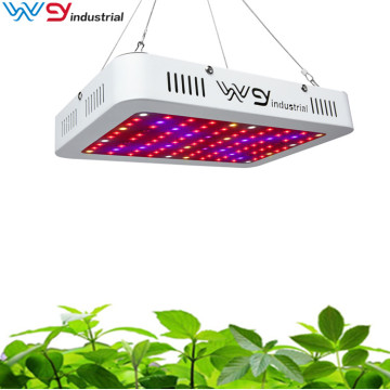 1000W led coltivano la luce con veg e bloom