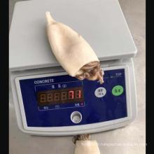 Tubes de calmars congelés avec tentacules Todarodes Pacificus calmars farcis