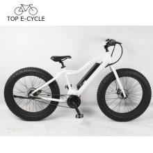 Nuevo diseño OEM 26 pulgadas e bicicleta 1000W bafang mediados de motor de tracción eléctrica bicicleta
