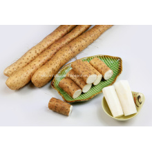 Pure Natural Plant White Wide Yam for Export