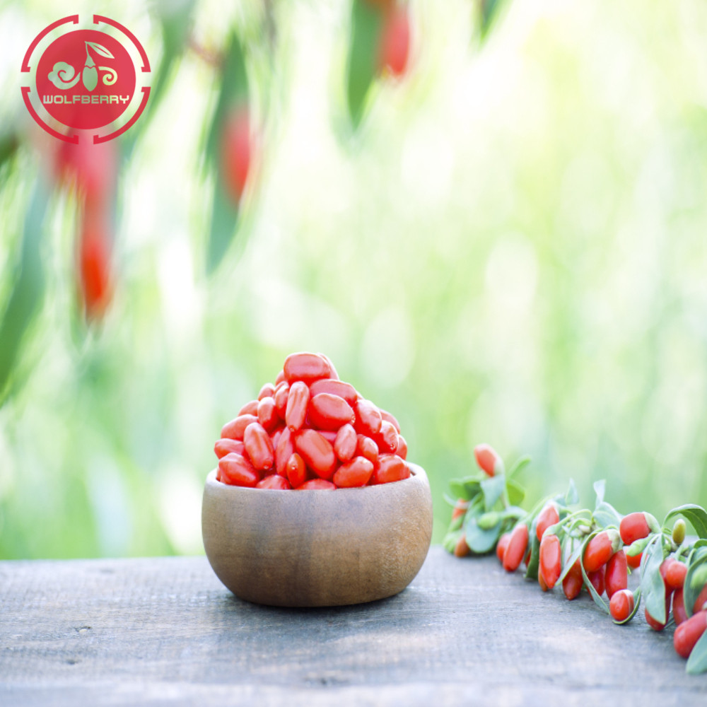 Superfood Nutritional Multiple Vitamin-Mineral goji berry