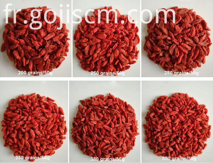 Dried Herbal Goji Berry sizes
