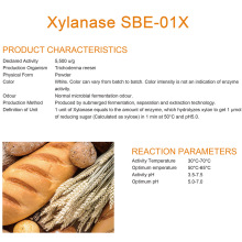 Concentrated Baking Xylanase for Bread Quality Improvement