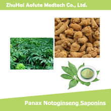 Top Quality Natural Panax Notoginseng Saponins