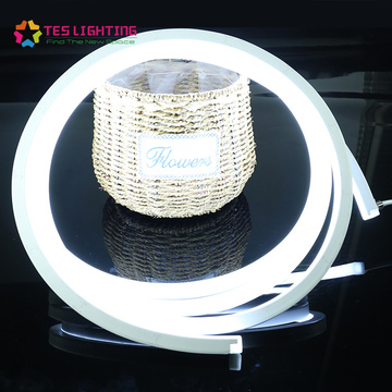 Luz de neón LED flexible impermeable
