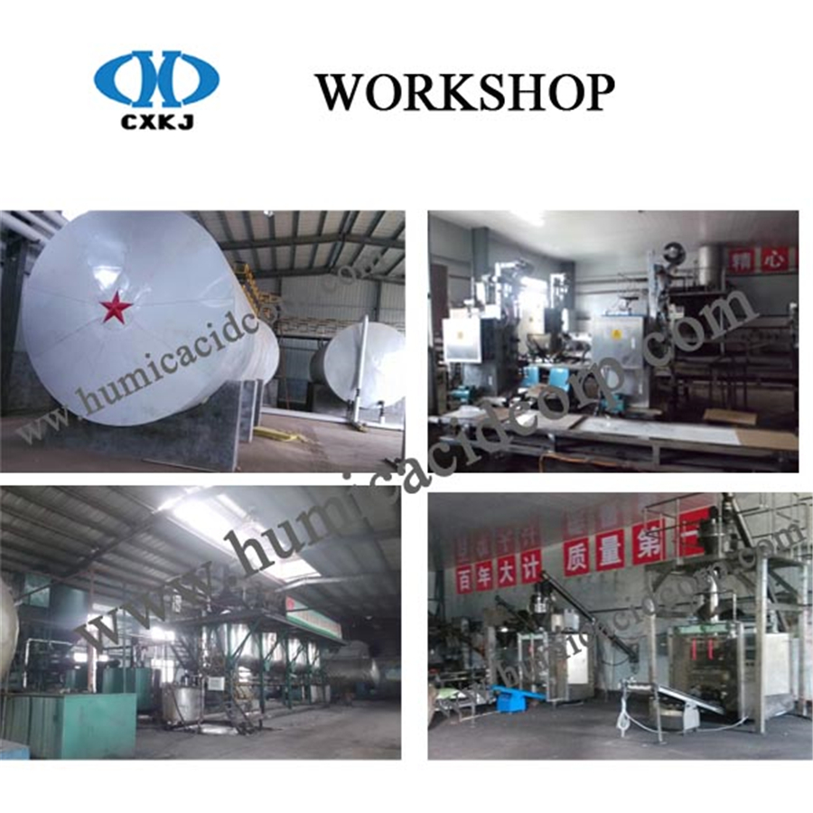 Potassium humate Workshop