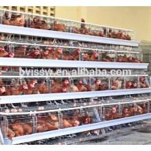 Cage de poulet de transport en métal forte / cage de transfert pour le poulet