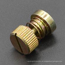 Parafuso de montagem do painel cativo (CZ381)