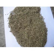2015new Crop Good Quality Cumin Seed