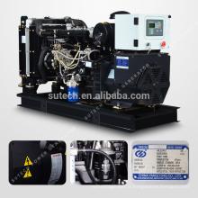 Générateur diesel de 10kw Yangdong avec silencieux générateur de type silencieux 12kva canopée