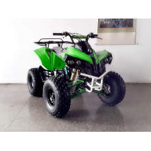 125cc Автоматический мини Квадроцикл для цепной привод (GA005 лей)