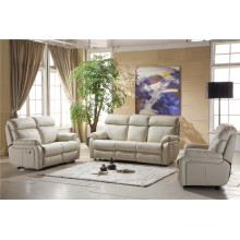 Electric Recliner Sofa USA L&P Mechanism Sofa Down Sofa (841#)