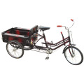 Pliage d'aluminium Tricycle adulte