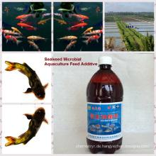 -Algen organisches biobakterielles Impfmittel für Aquakulturfutter