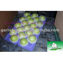 Vender 2013 manzana verde