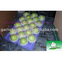 Vender 2013 maçã verde
