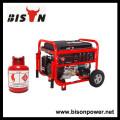 BISON (CHINA) Generador Proveedor Todos los tipos de generador de gas, generador de LPG, generador de biogas