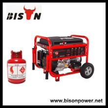 BISON (CHINA) Generator Lieferant Alle Arten von Gas Generator, LPG Generator, Biogas Generator