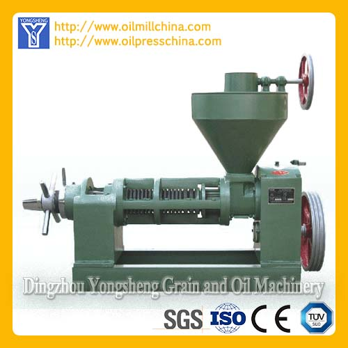 Sunflower Oil Equipment
