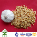 Heiße Verkäufe Jinxiang gebratene Knoblauch-Granulat-Ernte