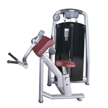 Biceps Curl Machine Commercial Gym Equipment