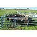 5 Bar Viehzucht 1.6m Hochviehplatte
