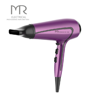 Nuevo diseño profesional Salon Ionic Ceramic Hair Blower