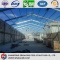 Extensão de Steel Frame Shed para Workshop de Porcessing