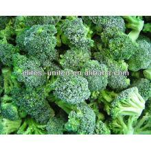 IQF brocoli congelé