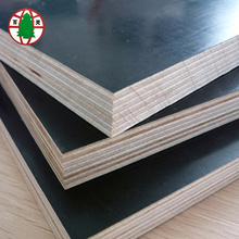 13 ply shuttering film faced plywood