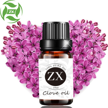 Venta al por mayor FACTORY Professional Clove Essential Oil