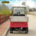 Personalizado 2 lugares de carga carrinho de golfe utilitário carrinho de buggy